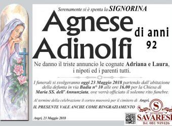 adinolfi agnese